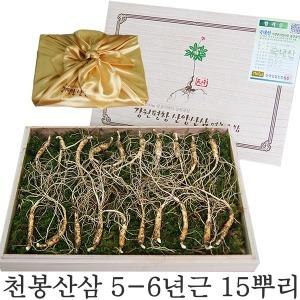 천봉산삼 6년근 15뿌리 장뇌삼 산양삼 부모님선물
