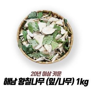 해남 황칠나무 (잎/나무) 1kg /20년 이상재배/최상품