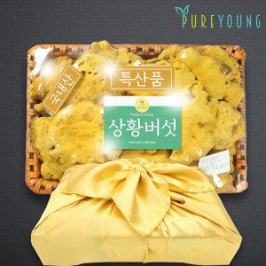 국내산 상황버섯 500g 선물세트