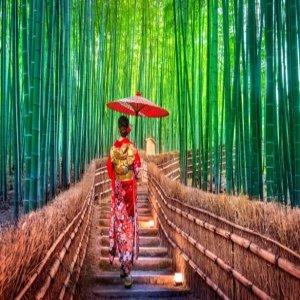 BEST상품 인천출발 도톤보리근처+조식포함+IP시티호텔 오사카3일 자유여행