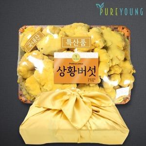 국내산 상황버섯 1kg 선물세트