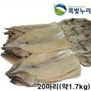 오징어 마른오징어 건오징어 20마리(약1.7kg) 동해안發