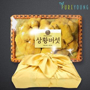 국내산 상황버섯 300g 선물세트