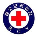 RCY 청소년적십자 스티커 20장-뱃지 마크 견장