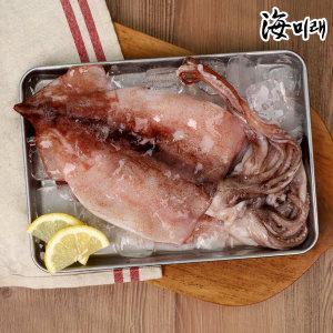(현대Hmall) 해미래  국내산 손질 냉동 오징어 270g 내외 (2마리) x 5팩