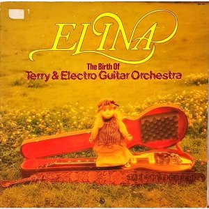 L4053- 일본 팝LP/ ELINA THE BIRTH OF TERRY ELECTRO GUITAR ORCHESTRA