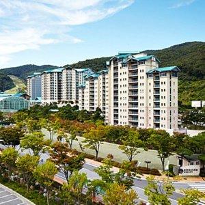|카드할인 7프로| |경기 리조트| 곤지암리조트 (하남 광주 여주 이천)
