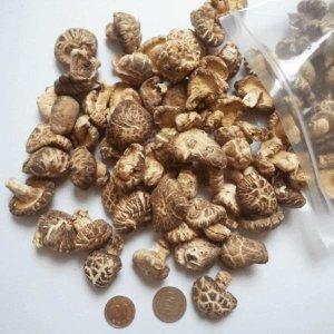 반딧불참표고버섯 흑화고 소300g 건표고