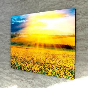 햇살 해바라기 인테리어 그림 액자 집들이선물(대)