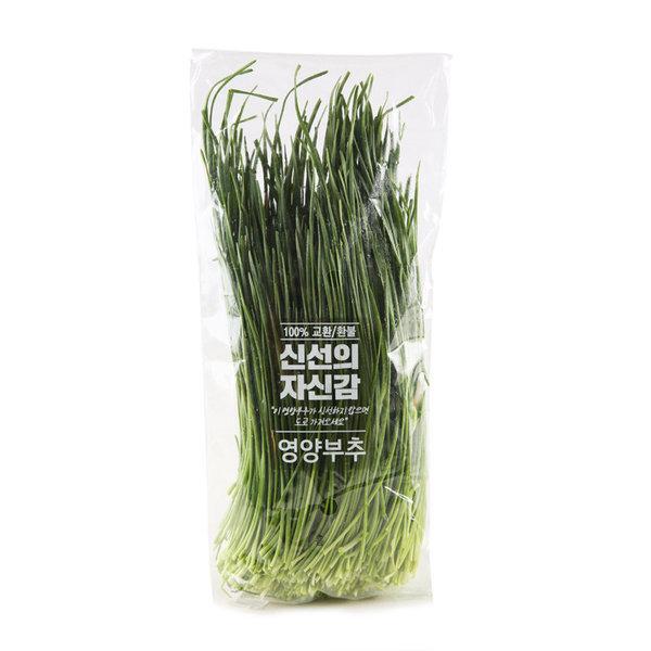 영양부추_ 봉