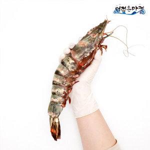 자연산 킹 블랙타이거새우 1kg 4미 대하 캠핑 메뉴
