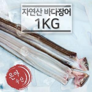 은아수산 100%국내산 바다장어1kg(소)아나고붕장어