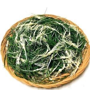 알짜한 봄나물 달래 직접재배 산지직송 햇 달래 1kg
