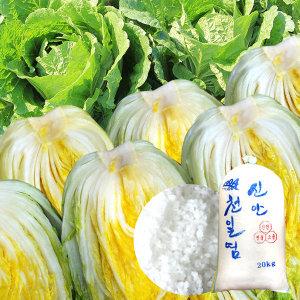김장절임배추 강원도 고랭지절임배추 20kg 11월배송