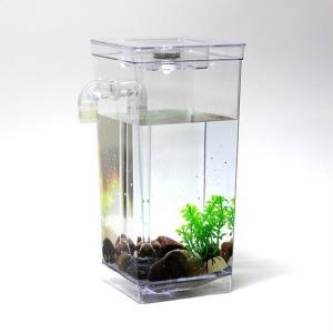 LED 자동청소어항 미니 물고기 구피 열대어 수조세트