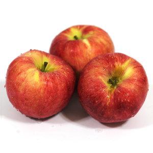 아침이슬 사과 가정용 햇 빨간사과 8KG 간식(32-35과)