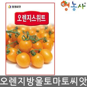 오렌지스위트 /20립 고급종 방울 대추 토마토씨앗