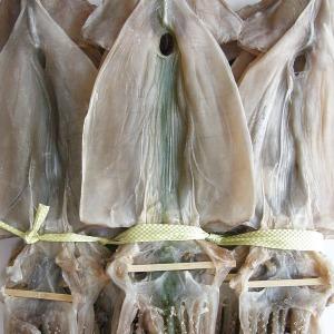 국내가공 마른오징어20미 1.1kg