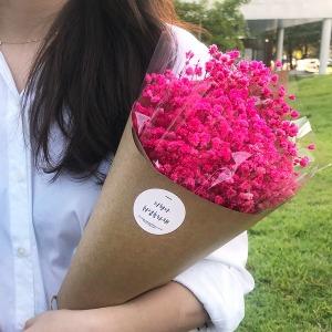 프리저브드 안개꽃 꽃다발/레인보우 라지꽃다발