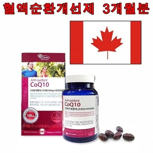 혈관청소 코큐텐 약3개월 항산화제 영양제 혈행개선제