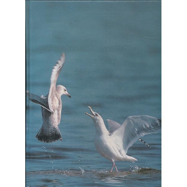 사이언스북스 새 (자연과 인간 5)(양장본)