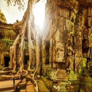 베트남/캄보디아(앙코르와트) + (마사지 2회) 6일