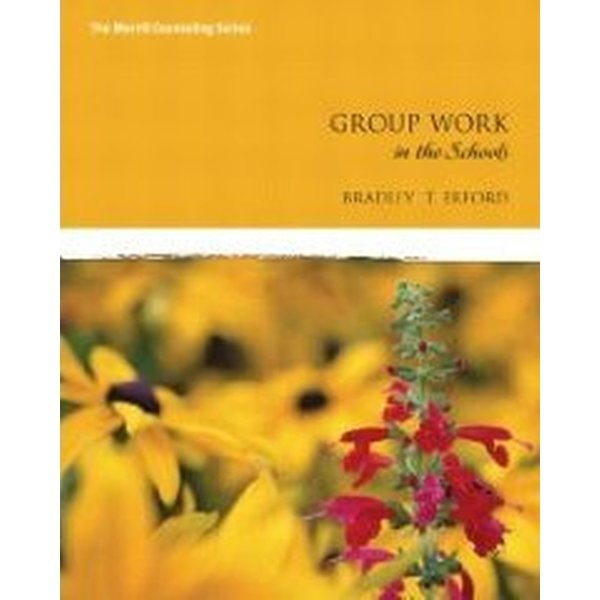 Group Work in the Schools (Paperback)