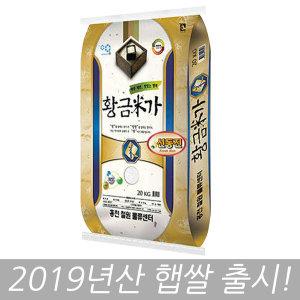 황금미가 신동진 쌀 20kg 19년산 (당일도정)