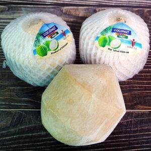 코코넛 9입/베트남/야자수/야자열매/열대과일/coconut