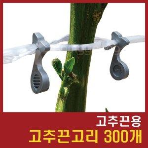 고추끈고리 300개/고추끈용