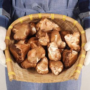 나주 참송이 버섯 1kg(상/못난이랜덤)