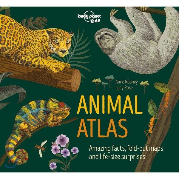 Animal Atlas  Anne Rooney