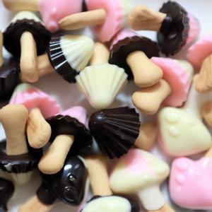 초콜렛 만들기 DIY-미니 초코송이 만들기 세트