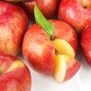 새벽이슬 사과 가정용 경북 부사 3kg 소과 (13-14과)