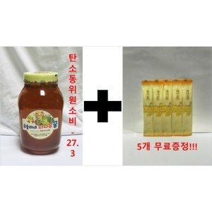 트루허니 100%자연숙성 피나무 꿀 2.4kg/탄비-27.3