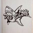 포인트 스티커 상어 그래픽 아이방
