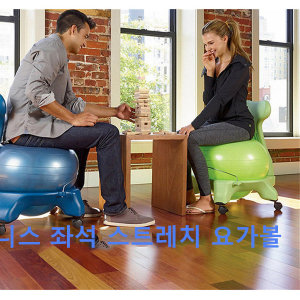Al yoga 요가볼짐볼 자세교정 바른척추기능성의자 의자