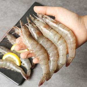 2019 신안 팔금도 생물 대하 흰다리 새우 1kg