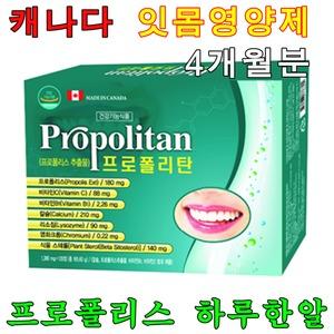 잇몸에좋은 영양제 약4개월분 치아 잇몸 프로폴리스
