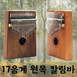 17음계 칼림바  손가락 피아노 세계악기 엄지 악기