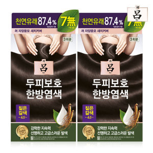 려 자양윤모 새치커버 4.0 짙은갈색 20g 3회분 2세트