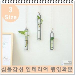 인테리어 소품 벽걸이 화분 진열대 걸이/식물 벽 장식