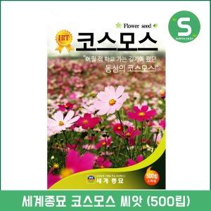 코스모스씨앗 500립 코스모스 꽃씨앗 꽃씨