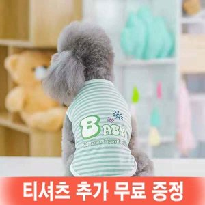 봄이네애견샵 1+1행사 강아지 여름옷 패밀리 티셔츠