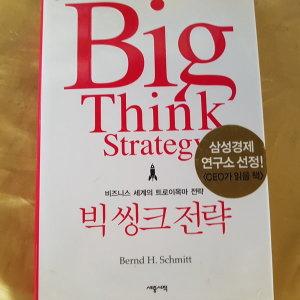 빅씽크 전략/번트 H.슈미트.세종.2008