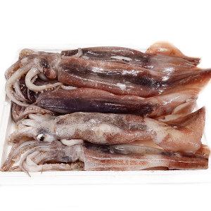 선상동결 오징어 1kg(5~7미) 채낚이 어획 상태A급