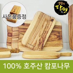 바우하우스 캄포나무도마 사은품증정 할인 54000원~
