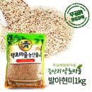 무공해 청정지역 발아현미 1kg 국산 2019년 햇곡