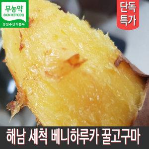 해남 세척고구마 베니하루카 꿀고구마 중사이즈 3kg