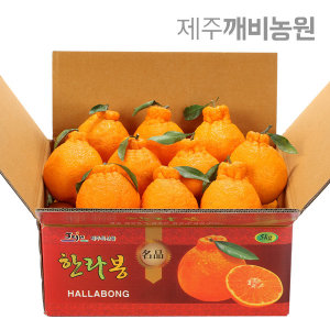 (깨비농원) 특고당도 한라봉 4.5kg 대과(선물추천)